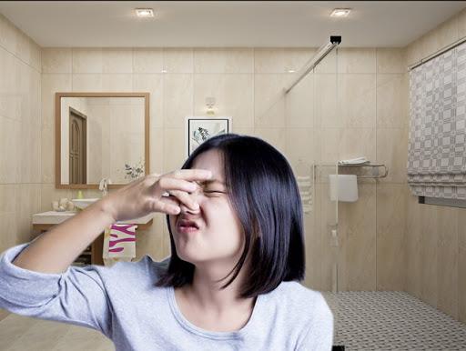 Cách khử sạch mùi khai nước tiểu đơn giản mà hiệu quả nhất