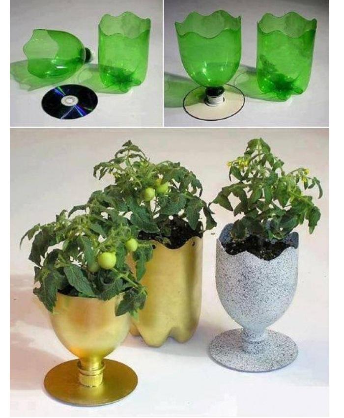 cách tái chế chai nhựa thành chậu hoa